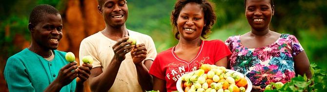 Farmers using Yara Fertilizers in Côte d'Ivoire