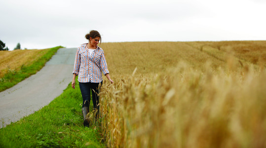 Don't forget about sulphur
