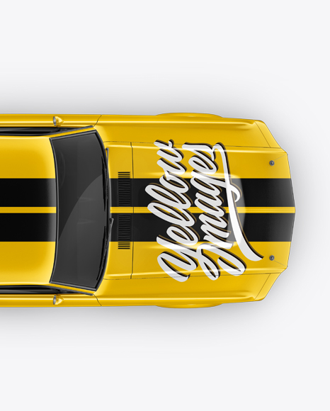 1967 Shelby Mustang GT500 Mockup - Top View