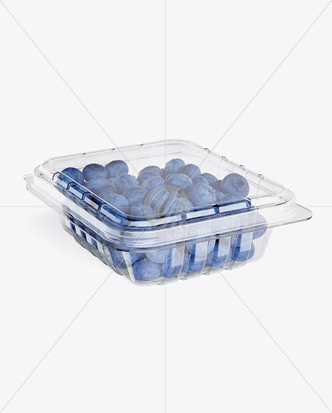 Container w/ Blueberries Mockup