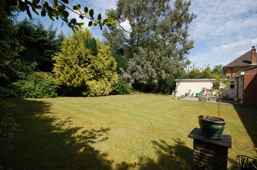 MUVA Estate Agents : Rear Garden