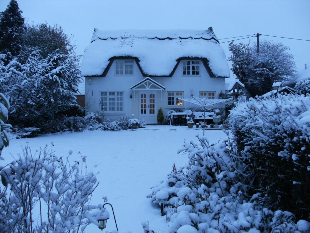 MUVA Estate Agents : Snow Scene