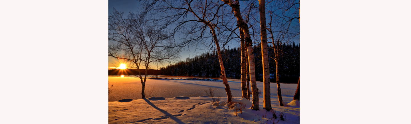 Shooting outdoos in the cold weather can get some great winter photography