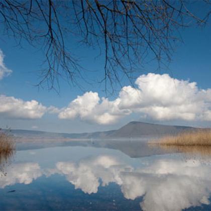 Foto La Verde Tuscia