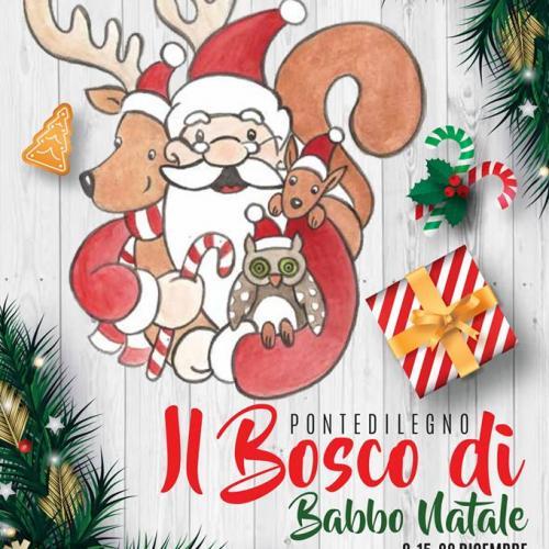 Logo IL BOSCO DI BABBO NATALE