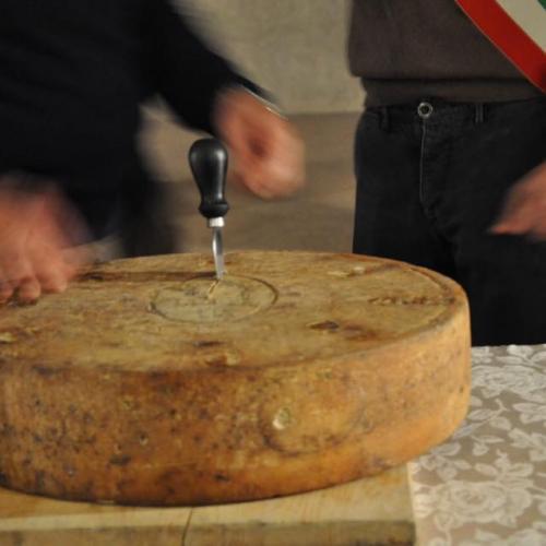 Logo TAGLIO DEL BRÈ formaggio tipico di Breno