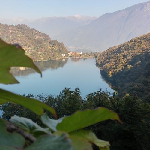Logo Tra vigne e ulivi in bassa Valle Camonica
