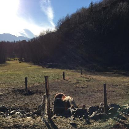 Foto Cammino dell'Antica Via Valeriana in Valle Camonica