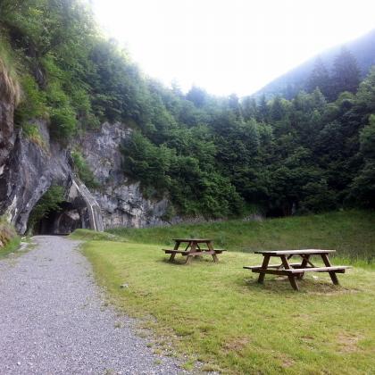 Foto Foresta di Val di Scalve