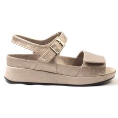 Zapato Cómodo G Fox 14S2