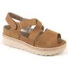 Zapato para plantillas e basset 2