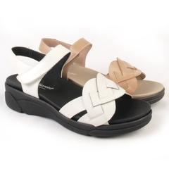 Zapato para plantillas tagoro 4