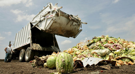 Food-waste_opt