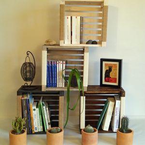 Caisses de rangements livres pour bibliothèque Sabrina