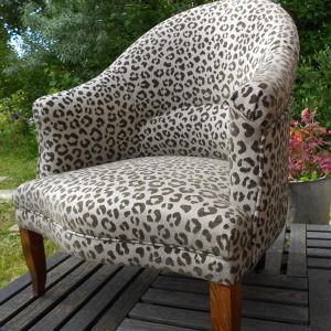 Crapaud léopard Véronique