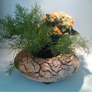 Composition floral Leslie