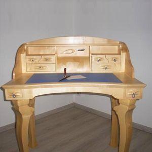 """Bureau """"le Libellule Bleu"""" Nicolas"""