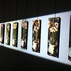 Grand Projet avec installation lumineuse pour un Musée Isabelle