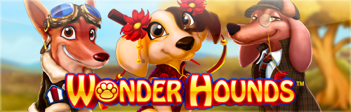 Slot of the Week - Wonder Hounds