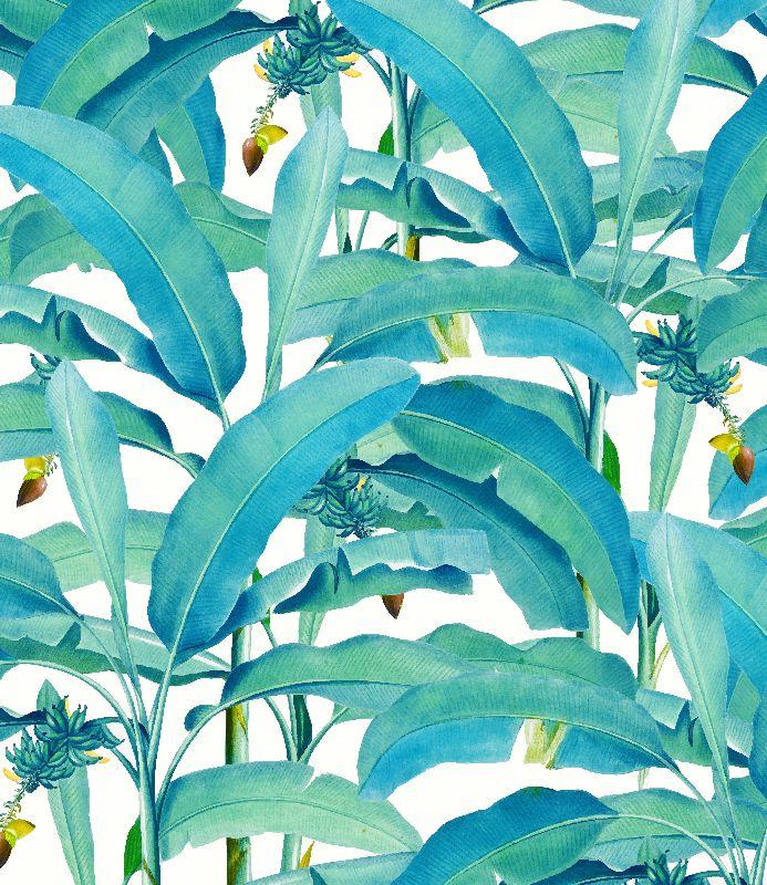 Banana Forest