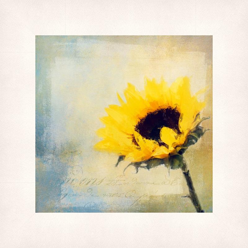 Impasto Sunflower
