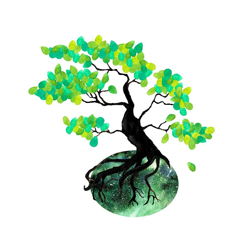 Organic Bonsai