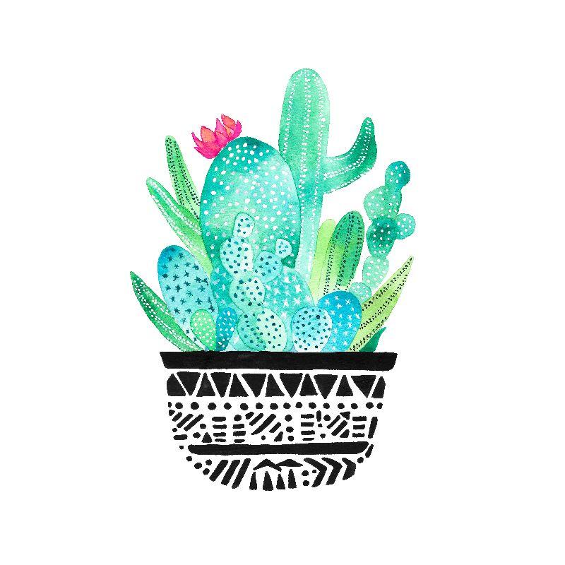 Pot Me A Cacti