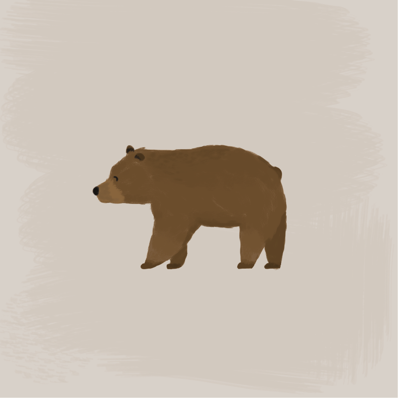 Barnaby Bear wandering