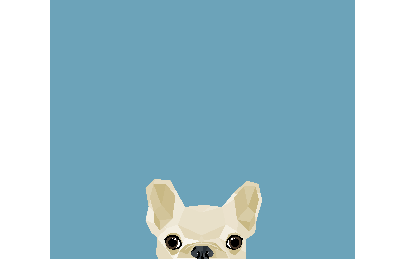 Peeping French Bulldog