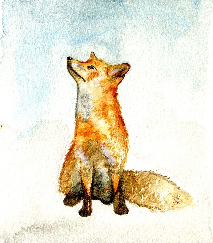 Pondering Fox