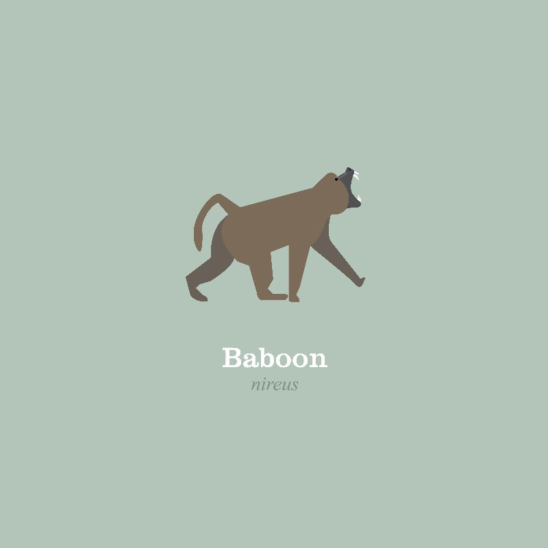 Roaring Baboon
