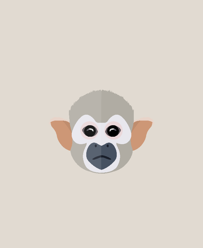 Squirrel Monkey Face