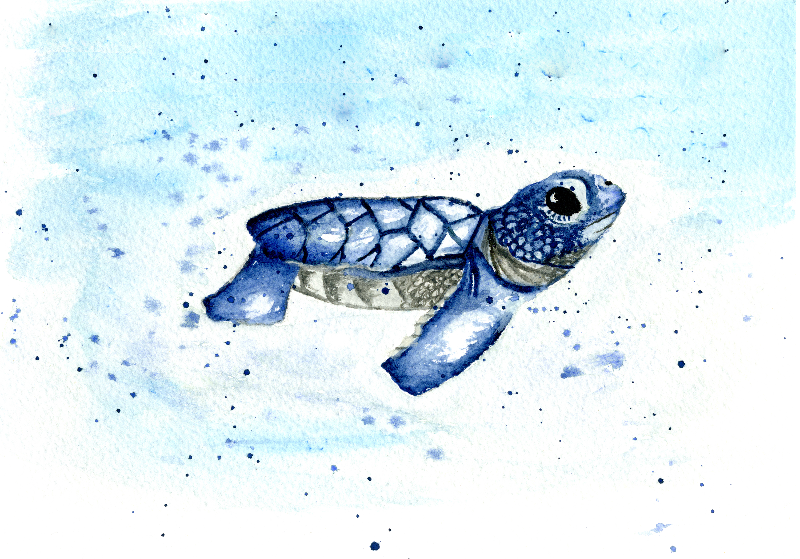 Watercolour Baby Turtle