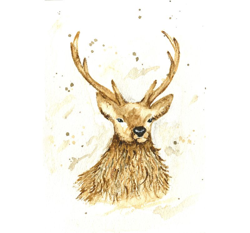 Watercolour Stag Reindeer