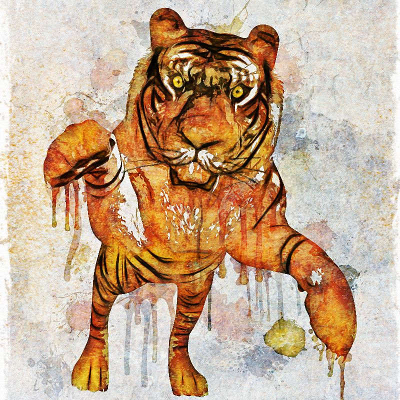 tiger splash