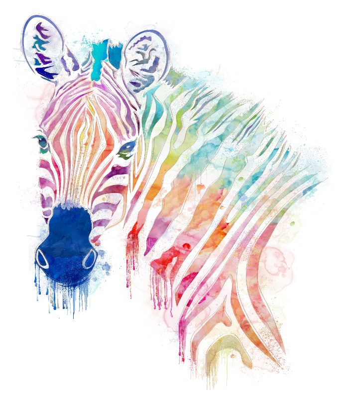 watercolor rainbow zebra