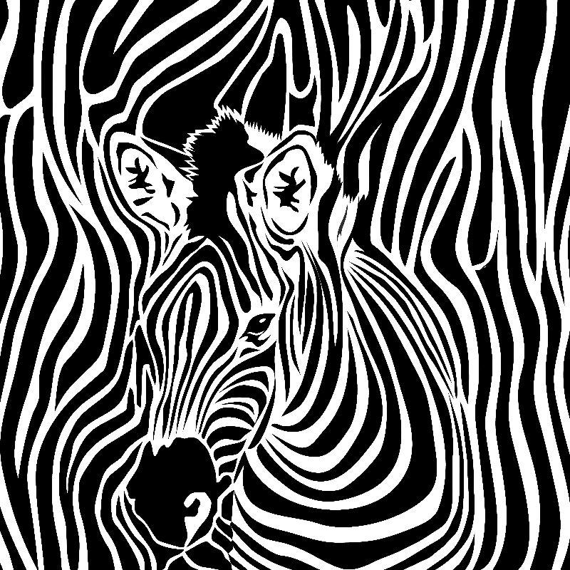 zebra opart