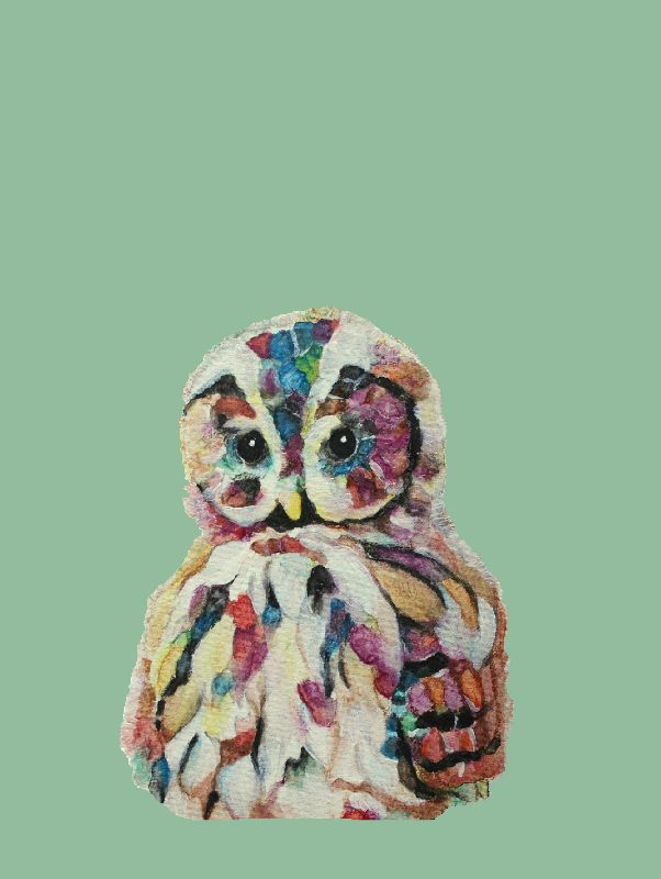 Colourful owl on mint