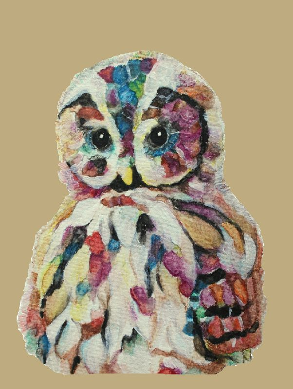 Colourful owl on tan