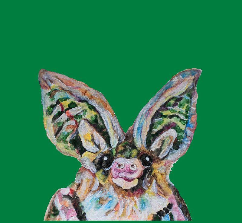 Long eared bat on green