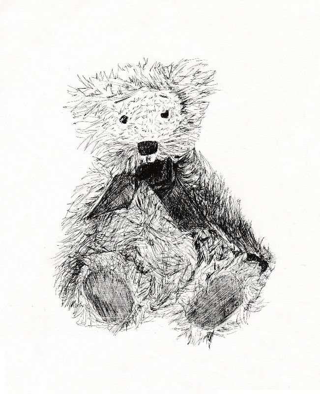 Teddy line drawing