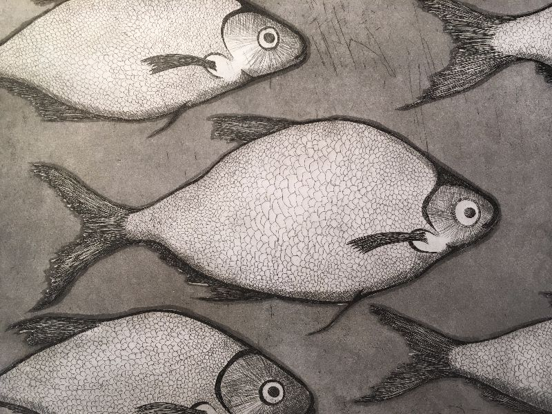 Sea bass etching