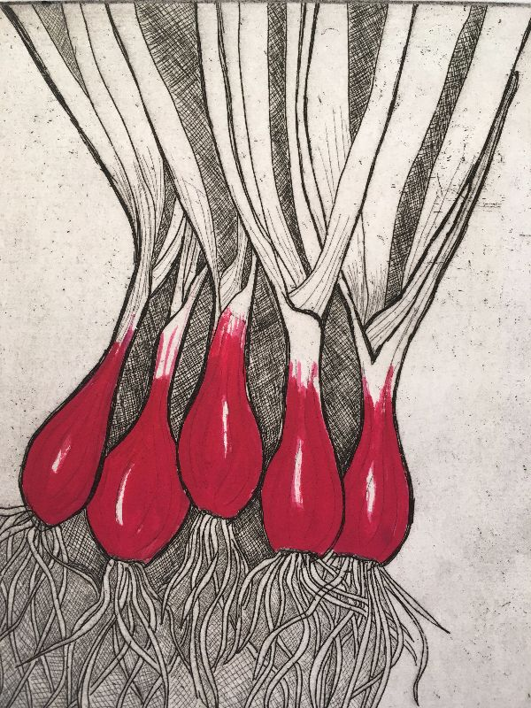 Spring onions etching red