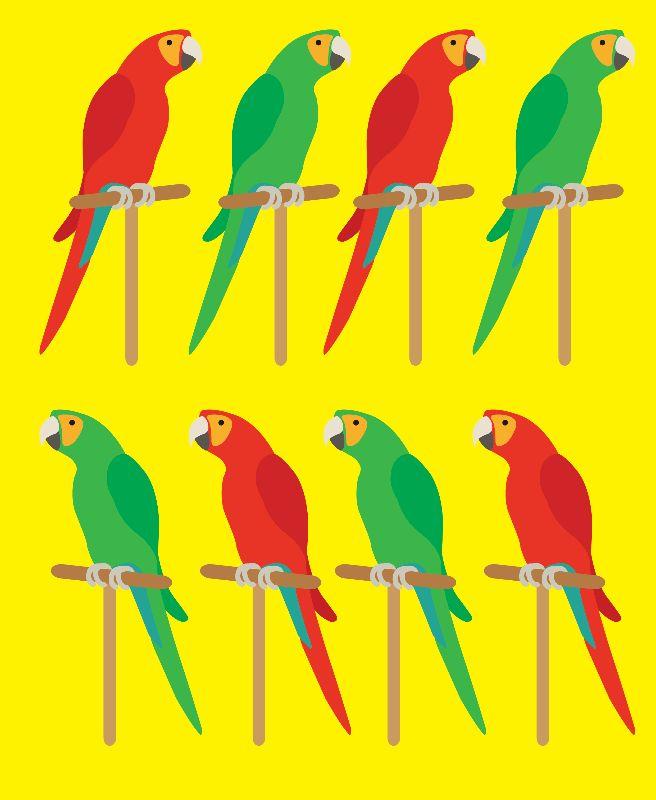 Parrots In Color