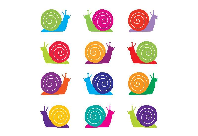 Snail Rainbow