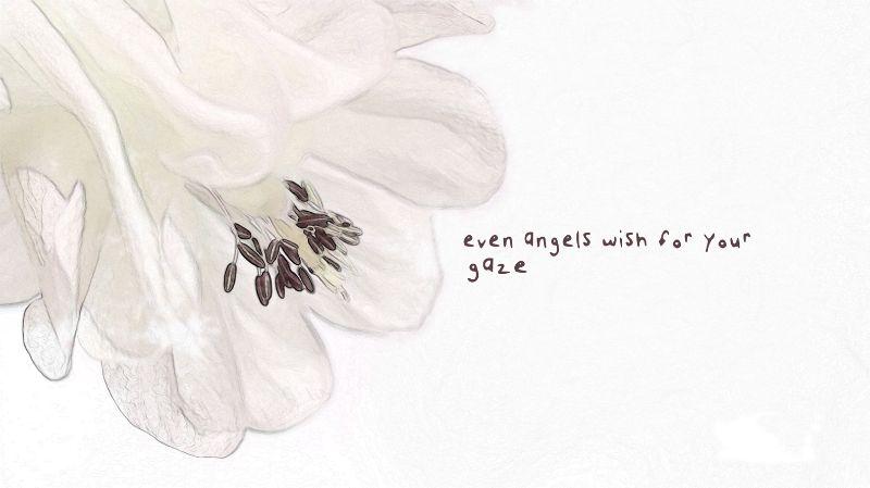 Angels Wish
