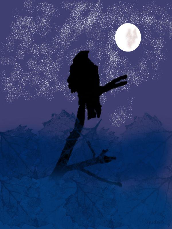 Raven in Moonlight