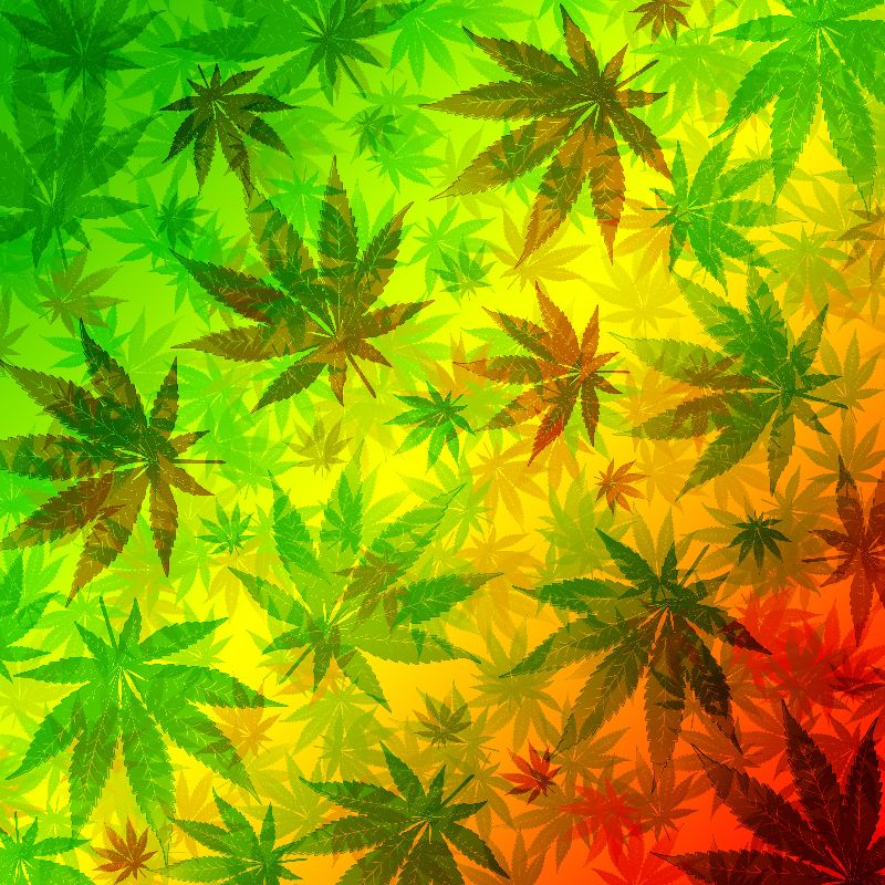 Marijuana Leaves Pattern