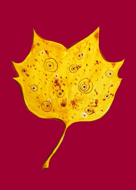 Fancy Yellow Autumn Leaf