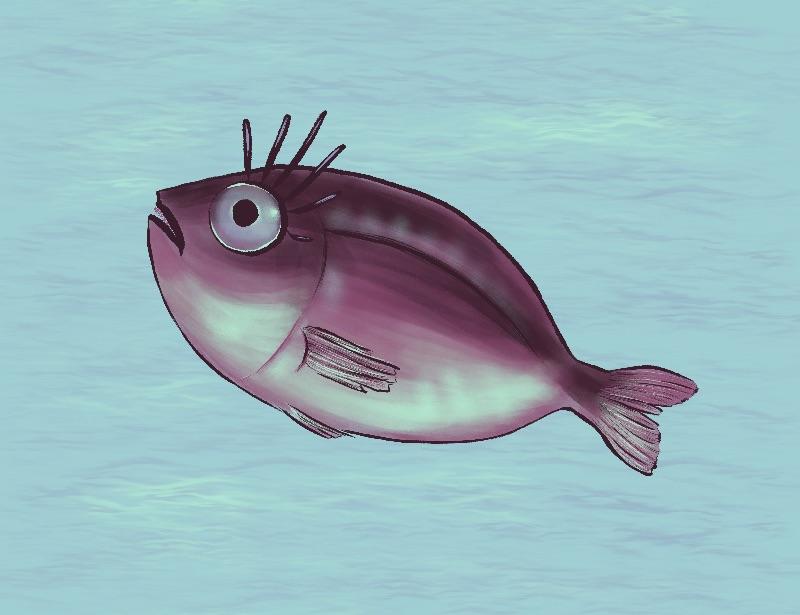 Funny Fish With Eyelashes